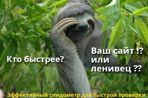 lenivec_speed