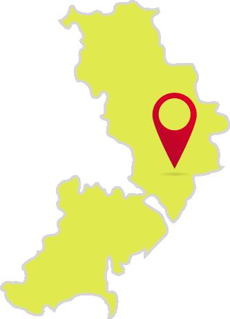 Разработка сайтов в Одессе с Веб студией Tarasoff