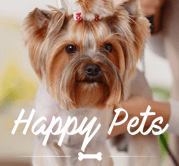 <p>Happy Pets a pet shopservices</p>