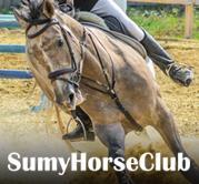 <p>SumyHorseClub - Equestrian Club</p>